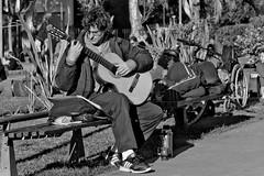 Guitar Hero (Wal Wsg) Tags: guitarhero heroedelaguitarra guitar guitarra guitarracriolla argentina argentinabsas bsas buenosaires caba capitalfederal ciudadautonoma ciudaddebuenosaires villacrespo parquecentenario park people gente candid candidbw candidstreet guitarrista slee sleeping durmiendo nap siesta canoneosrebelt3 callejeando calle streets street streetsbw calles byn bw blackandwhite blancoynegro dia day