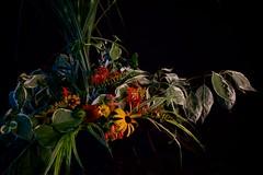 Summer's Abundance (The Good Brat) Tags: summer stilllife floral flower garden mimic abundance dramatic