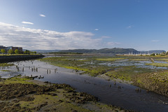 Gråelva, Stjørdal (Trond Sollihaug) Tags: gråelva stjørdal trøndelag norway river estuary seaside ebb delta mud canon5dmkii ef1635mmf4l bigsky sunrise morning
