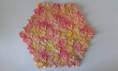 Petals tesselation - Catherine O'Mary - front (Monika Hankova) Tags: origami tessellation catherine omary paper