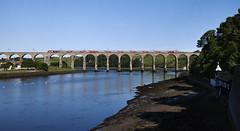 43295 & 43307 Berwick-upon-Tweed 08/07/2017 (Flash_3939) Tags: 43295 43307 class43 hst highspeedtrain diesel virgin virgintrains ecml eastcoastmainline berwickupontweed royalborderbridge 1e07 viaduct rivertweed fone rail railway train uk july 2017