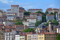 toits de Lyon (Jeanne Menjoulet) Tags: toits lyon croixrousse lyon1er dôme stvincent eglise rooftops
