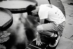 Longwood Gardens_002_01 (mujetdebois) Tags: ilfordpanf50 35mm analogphotography biancoenero blackandwhitephotography filmisnotdead filmlives filmphotography monochrome negroyblanco noirblanc schwarzundweis черноеибелое longwoodgardens canonelan100