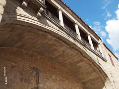 Murallas de Ávila 03 (e_velo (εωγ)) Tags: 2017 españa ávila primavera spring e620 olympus travels viajes viatges castilla ancientarchitecture murallas walls muralles