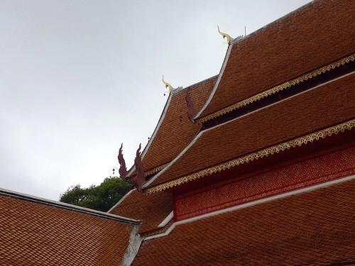 Chiangmai 1131