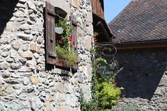 IMG_4130.jpg (Christophe Dayer) Tags: anniversaire juillet2017 yvoire auvergnerhônealpes france fr