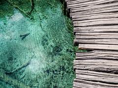 clear_water_way (AnteKante) Tags: slap plitvickajezera sonne kroatien lika waterfalls wasserfälle croatia see natur slapovi ruhig grün blue pflanzen nature green wasserfall plants blau bäume trees plitwitzerseen plitvice calm hrvatska lake