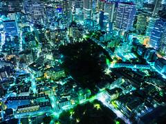 Tokyo Down (Stuck in Customs) Tags: japan stuckincustomscom tokyo treyratcliff rcmemories chocolate blue green night view above x1d hasselblad