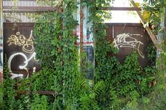 sober revs (Luna Park) Tags: ny nyc newyork graffiti revs lunapark sober tags tag handstyle rust