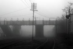 (Walter Daniel Fuhrmann) Tags: niebla fog tolosa tren train víasdeltren traintracks ciudad city decadencia decay puente bridge pedestrianbridge puentepeatonal blancoynegro blackandwhite bn