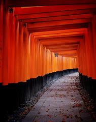 Fushimi Inari Taisha XXXV (Douguerreotype) Tags: japan kyoto buddhist temple shrine torii gate red vermilion lantern path