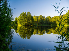Reflections (eNKO_nu) Tags: reflections nature water lake trees blue sky outdoors