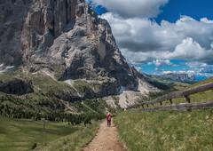 Towards The Mountain (bjorbrei) Tags: montain meadow trail path pathway fence walking alps sassolungo ciampinoi selva wolkenstein valgardena gherdëina gröden dolomites dolomiten dolomiti tyrol tirol tirolo italy italia
