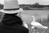20170713_170903-X-T2-6279.jpg (Erwin Schoonderwaldt) Tags: filmsimulation castricum swans acros netherlands bw fujifilm dunes
