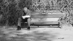 retocada 3 (alejandroviñoloparrilla) Tags: canon retrato lectura tranquilidad soledad granada