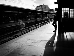 Reading (Hans-Jörg Aleff) Tags: berlin blackwhite reading streetphotography deutschland