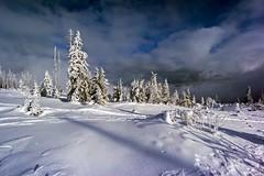 Winter landscape (sigiha1953) Tags: winter schnee snow landschaft landscape 2013