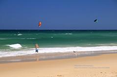 Noosa Heads, Castaways Beach, para-surfing (blauepics) Tags: australia australien queensland qld landscape landschaft seascape sea meer water wasser beach strand sunshine coast küste waves wellen turquoise türkis blau blue sand noosa heads wind surfer parasurfer surfing sport castaways