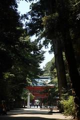 DP3Q2388 (chihiro2014) Tags: miyashita ibarakiken 日本 jp
