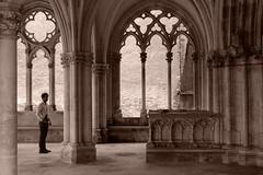 Afchine Davoudi marquant un temps sous le porche — Saint-Père-sous-Vézelay, Yonne, Bourgogne, juin 2017 (Stéphane Bily) Tags: stéphanebily bourgogne burgundy afchinedavoudi saintpèresousvézelay yonne portrait homme man