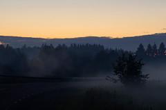 Öine udu (Jaan Keinaste) Tags: pentax k3 pentaxk3 eesti estonia loodus nature maastik landscape udu mist