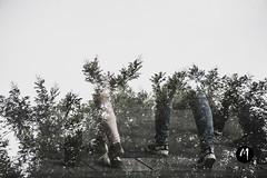 23 Miguel A. Ramos ANDARSE POR LAS RAMAS (espaciosparaelarte) Tags: arte artecontemporáneo artistas artesplásticas artista actividad acción actividades cultura comunidaddemadrid creación didáctica diálogo detalle digital exposición exposiciones espacio experimentación expo exposicion espaciosparaelarte experiencia españa fotografía fotografia foto fotográfica gente grupo imagen madrid museo muestra salacanalisabelii spain taller talleres deriva derivafotográfica