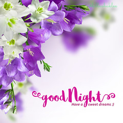 Good Night (DillaSyadila) Tags: dillashaklee shakleebydilla shaklee ireachfamily quotes islamicquotes vitamin supplement