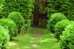 S.MasséMaisonduMajordome©TourismeHautLimousin-47 (tourisme_hautlimousin) Tags: jardin gîte vacances hautlimousin patrimoine location fleurs botanique tourolim