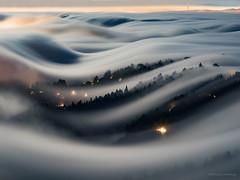 """Moonlit Fog Waves""-Mt.Tamalpais State Park, CA (Nicholas Steinberg photography) Tags: mttamalpais mttam mttamalpaisstatepark marincounty millvalley california westmarin fog karl fogwaves fogwave moonlight moon moonrise nicholassteinbergphotography nicksteinberg trees mystical lights longexposure"