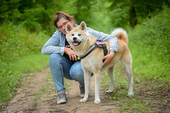 yume ❤ (stphanielegay) Tags: yume akitainu dog mydog dogjapanese nikond7200 love 50mmf18d nature nikon bestfriend