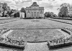 Jardin Bagatelle (Thierry-Photos) Tags: leica leicam8 summicron35versioniv