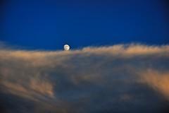 Lonely rolling (Takeuchi@photo) Tags: moon sunset cloud sky plane nikon d750