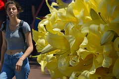 Pretty Flowers (swong95765) Tags: flowers yellow woman girl female beauty elegant foreground lovely gorgrous spectacular focused