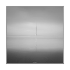 One pole (YFphoto168) Tags: torreypine torrey pines sandiego beach state fishing pole fog morning black white