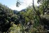 20170709-17-Bluff River Gorge walk (Roger T Wong) Tags: 2017 australia bluffrivergorge buckland rogertwong sel1635z sony1635 sonya7ii sonyalpha7ii sonyfe1635mmf4zaosscarlzeissvariotessart sonyilce7m2 tasmania bushwalk caves cliff erosion gorge hike outdoors sandstone tramp trek walk