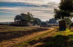 The Farm (Peter Leigh50) Tags: leicestershire rural countryside farmland field sky trees farm trailor straw track early morning sunshine sun sunny canon eos 6d
