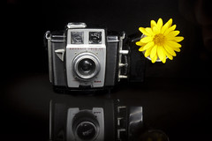 A Surprising Flash! (Ben Aerssen) Tags: kodak brownie flower flash lightpainting reflection longexposure old metal rubber plastic glass shadows contrast light bright yellow black white grey gray minimalism camera stilllife