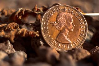 Queen Elizabeth II coin