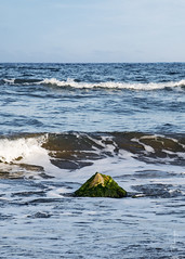 El canto de los pájaros extraviados (Pilonga) Tags: piedra luz pájaro agua mar extravíos vertical poesia 202