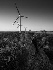 the futurist (liam.jon_d) Tags: mono alternativeenergy arty australia australian bw billdoyle blackandwhite energyaustralia lavender lavendertrail longdistance lowcarbonenergy midnorth monochrome outcrop overlook palisade palisadeassetmanagement peopleimset portrait portraitimset renewableenergy renewables ridge ridgeline rocky sa southaustralia southaustralian track turbine vista walkingtrail waterloo waterloowindfarm windfarm windpower windturbine