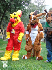 DSC00173 (Thanriu) Tags: fursuit chile meet junta furry santiago friends amigos canid monster avian ave canino monstruo badge angel dragon parrot artic wolf yerik dog