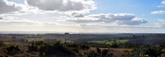 Camp Hill Vista (Worthing Wanderer) Tags: eastsussex ashdownforest nutley duddleswell february winter walk weald sunny sussex woods woodland forest