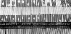 tettoia (gianclaudio.curia) Tags: tettoia bianconero blackwhite pellicola minimalismo kodak kodaktrix sviluppo rodinal ilfordmultligradeivrcdeluxe ilford olympus om2n zuiko13528