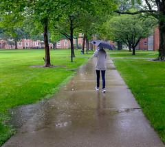 Monday rain-4
