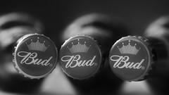 Buddies (nyanc) Tags: buddies budweiser hmm macromondays macro monochrome bw blackandwhite blackwhite closeup d5200 europe europa american beer flickr nikon netherlands prime three