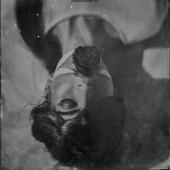 """This Is How One Dies Upon a Flower"" (RapidHeartMovement) Tags: self selfportrait squareformat portrait poeticalinspirations poświatowska poetry photography blackwhite conceptual conceptart motifofdeath rapidheartmovement"