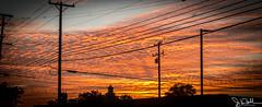 202/365 - Sunset