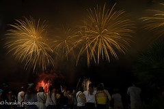 FiReWoRkS !!! (harakis picture) Tags: fireworks feux artifices nuit night a7 sony