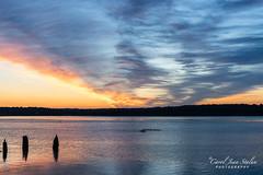 Potomac Sunrise 7.25.17 (caroljeanphotography) Tags: sunrise potomacriver dc dawn crew