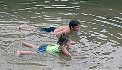 Kids swimming at Hungry Mother State Park (vastateparksstaff) Tags: swimming kids cooloff coolingoff water beach
